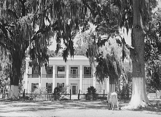 a view of slavery from a south plantation owner Although olmsted abhorred slavery, his accounts were objective and accepted by most southern critics as accurate depictions of plantation life a glimpse of the south before the civil war we join olmsted's account as he accompanies an overseer on a tour of a large, prosperous plantation in mississippi: advertisment the plows at work.