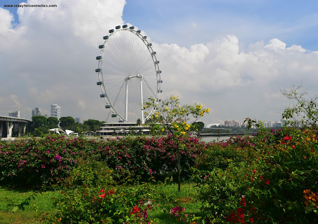 Singapore Flyer by the daylight