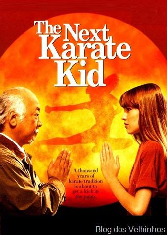 Karate Kid IV : La Nueva Misión (1994) – Latino Online