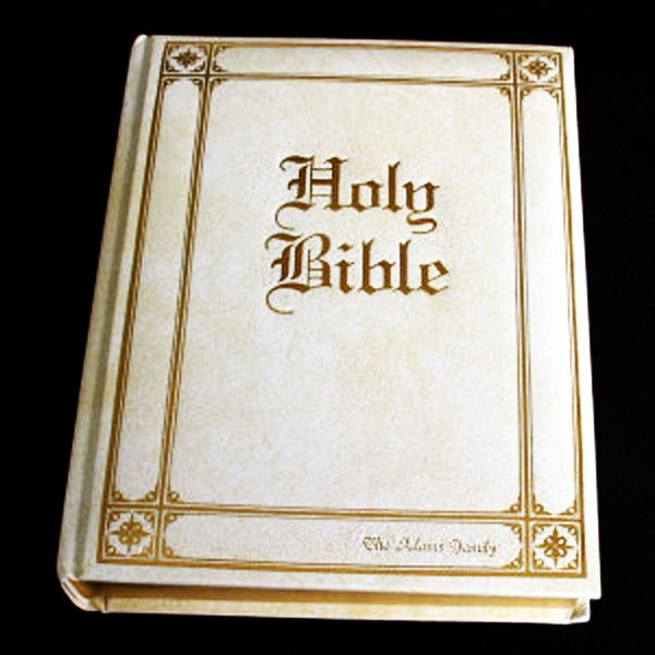 Holy Bible Niv Mp3 Free Download