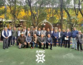 AMIC, PORQUE LA CONSTRUCCIÓN DE MÉXICO NO DEBE DETENERSE