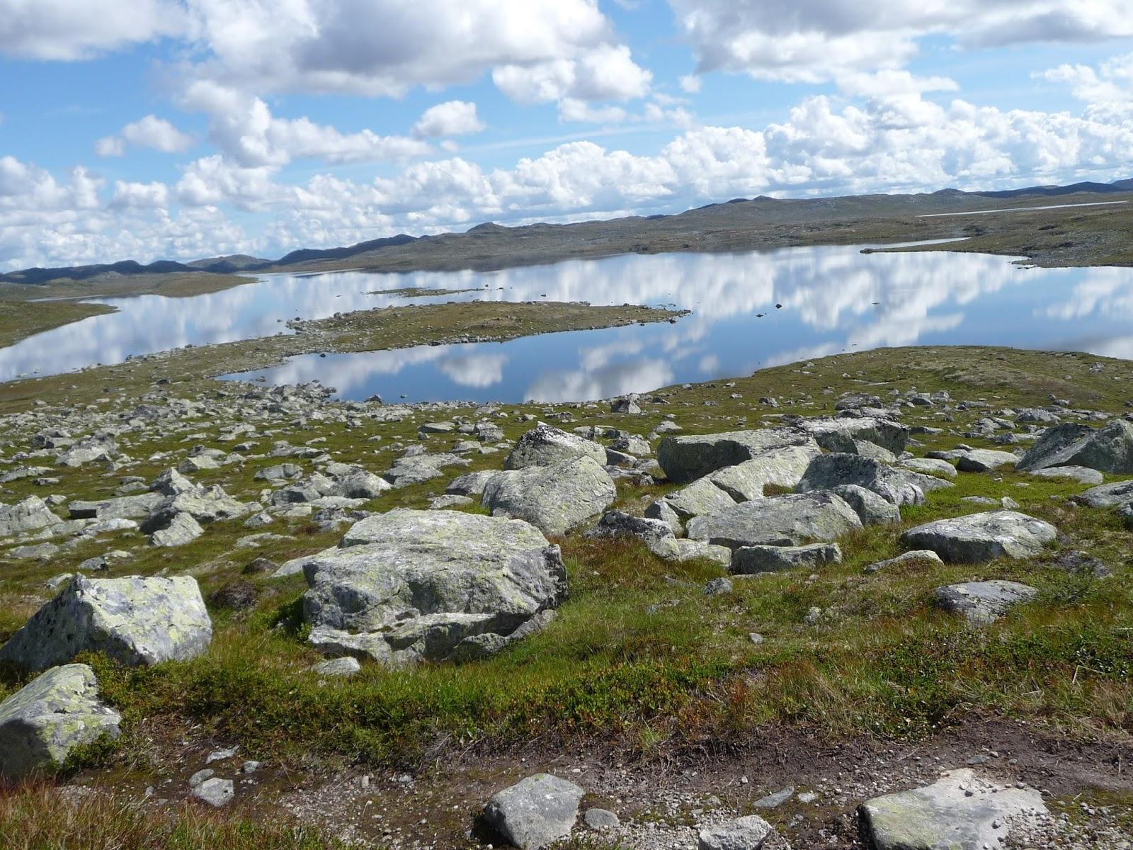 durch die wildnis norwegen