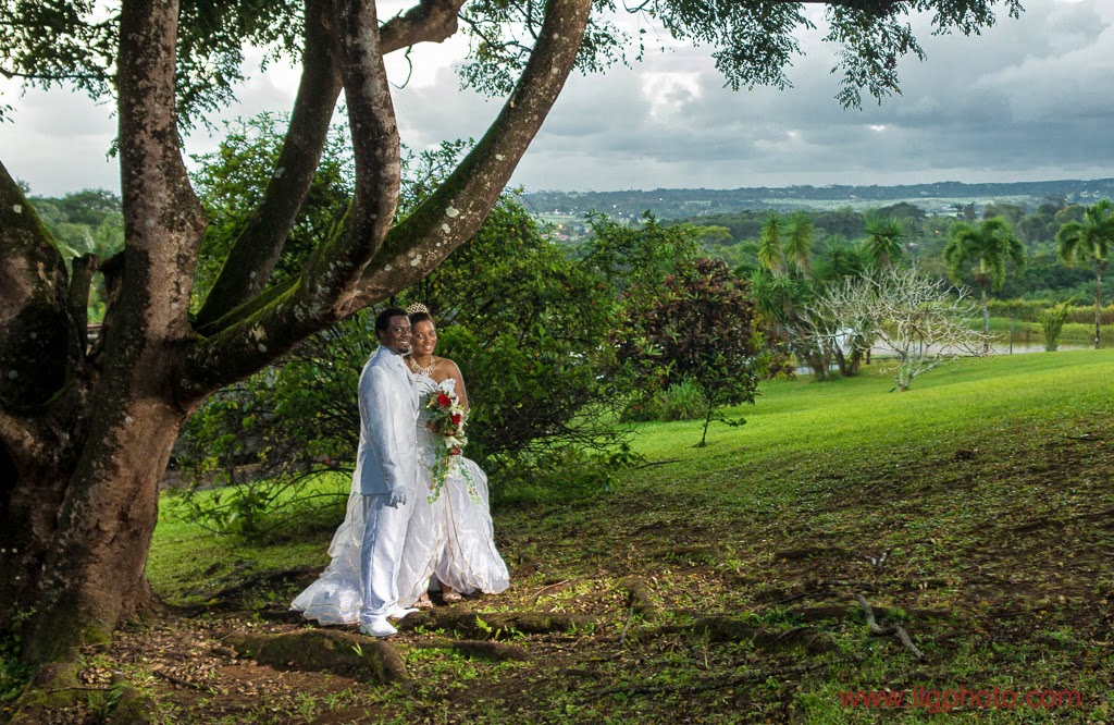 Mariage de Steffy et Manuel: domaine de Séverin, couple sous l'arbre