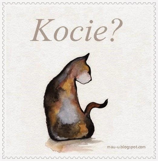Kocie?