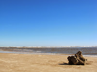 paisaje playa uruguay canelones