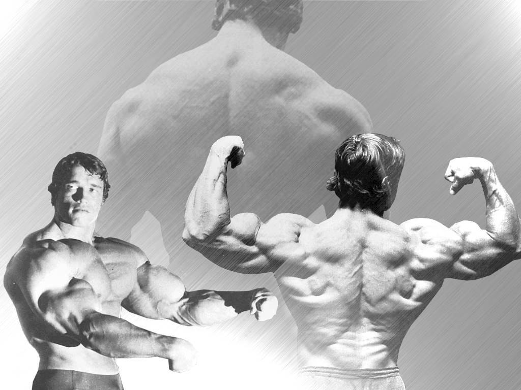 http://2.bp.blogspot.com/-JBuIq6WsnM4/UIPSRxyphxI/AAAAAAAAAr8/aJ079xzA1Ds/s1600/arnold+schwarzenegger+Arnold-Schwarzenegger-Pic.jpg