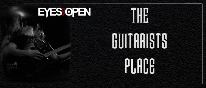 The Guitarists Place