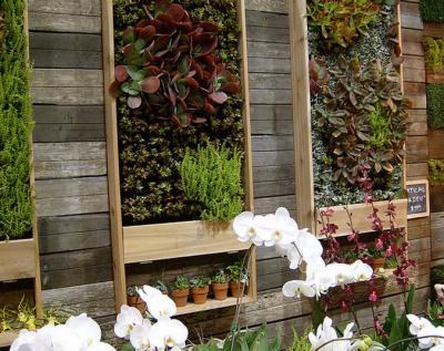 Desain Kebun Minimalis on Kebun  Kebun Vertkal  Vertical Garden  Garden Konsep