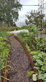 Grönsakslandet inifrån