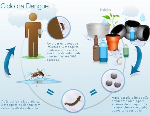 Campanha da dengue em Sorriso MT