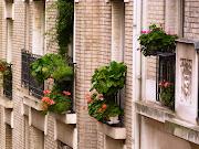 Paris Bits: Montmartre in the Rain (paris montmartre )