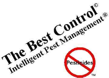 thesis on pesticide residues Click here click here click here click here click here if you need high-quality papers done quickly and with zero traces of plagiarism, papercoach is the.