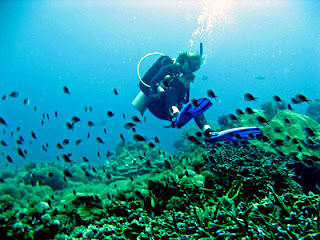 scuba diving in Gili Trawangan, diving in gili trawangan, adventure in lombok