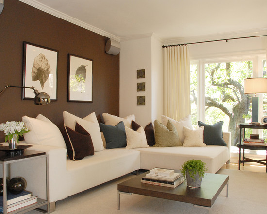 Apartment Decorating Ideas Brown