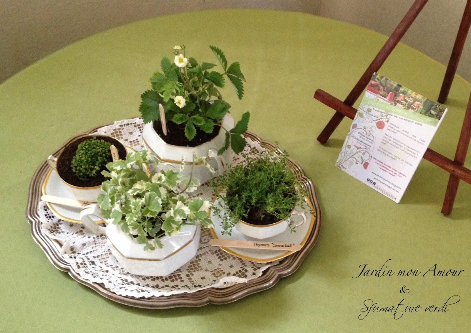 Giardini in miniatura e da tavola sfumature verdi - Giardino in miniatura ...