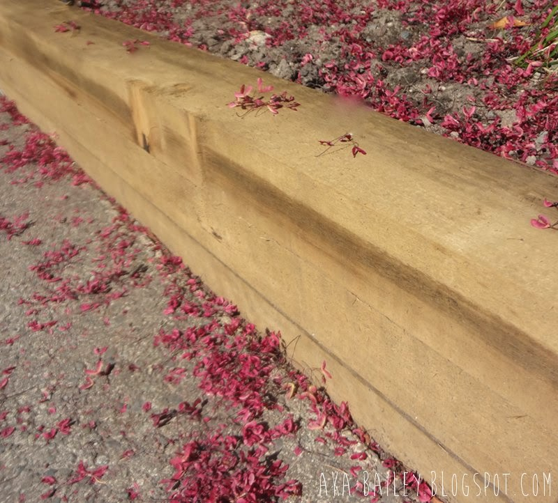 Pink flower petals alongside a brown wooden wall