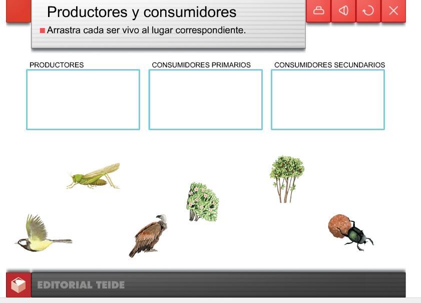http://www.editorialteide.es/elearning/Primaria.asp?IdJuego=949&IdTipoJuego=1
