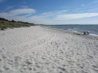 Fin sandstrand i Falsterbo, dåligt med folk