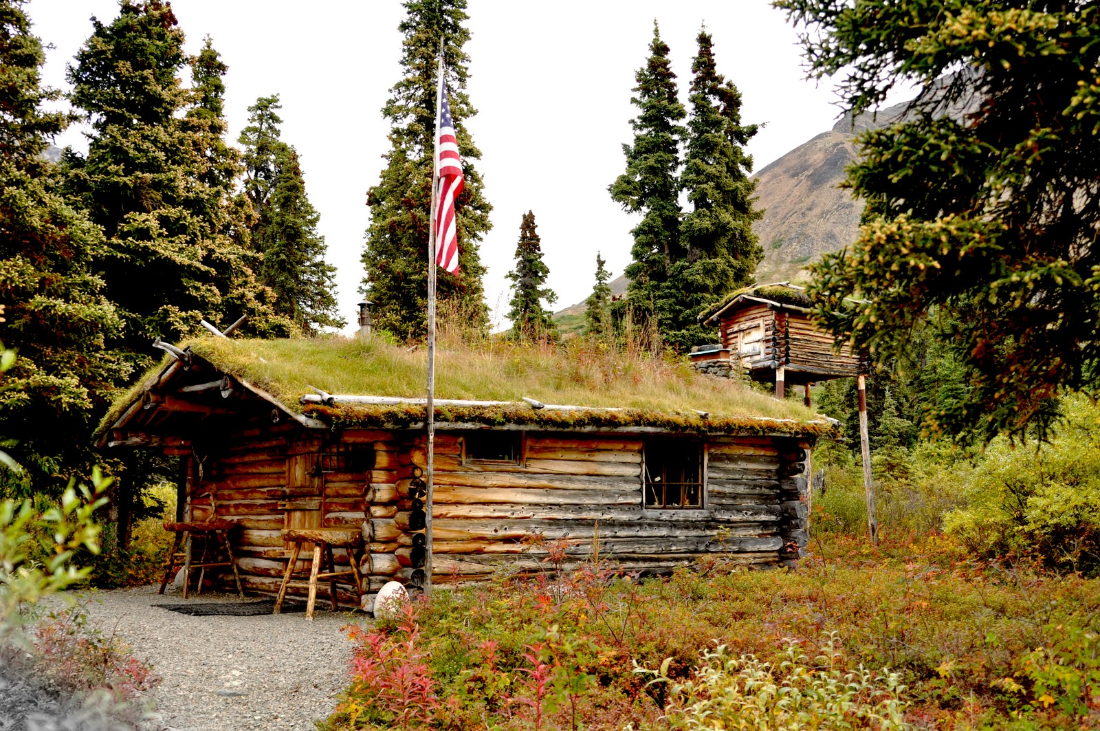 Alaskan ventures dick proenneke and the twin lakes of alaska for Alaska cottage