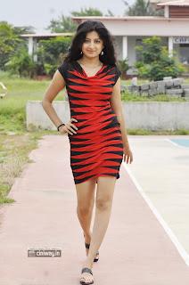 Aadu-Magadura-Bujji-Actress-Poonam-Kaur-Stills