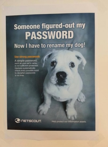 funny pic Someone figured-out my password