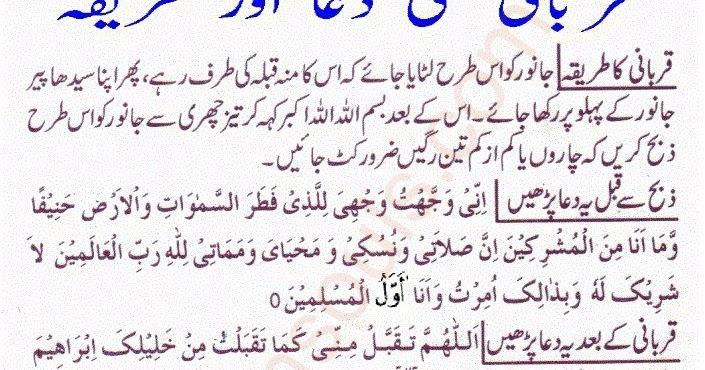 Qurbani Ki Dua Or Tarika Life Of Muslim Islam Quran
