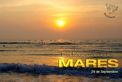 Resultado de imagen para dia mundial de los mares