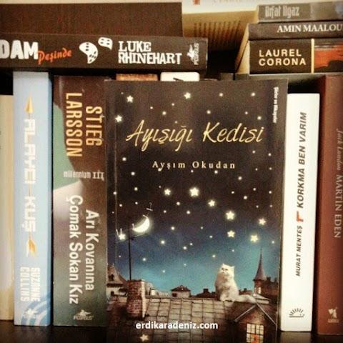 Bir Kitap: Ayışığı Kedisi