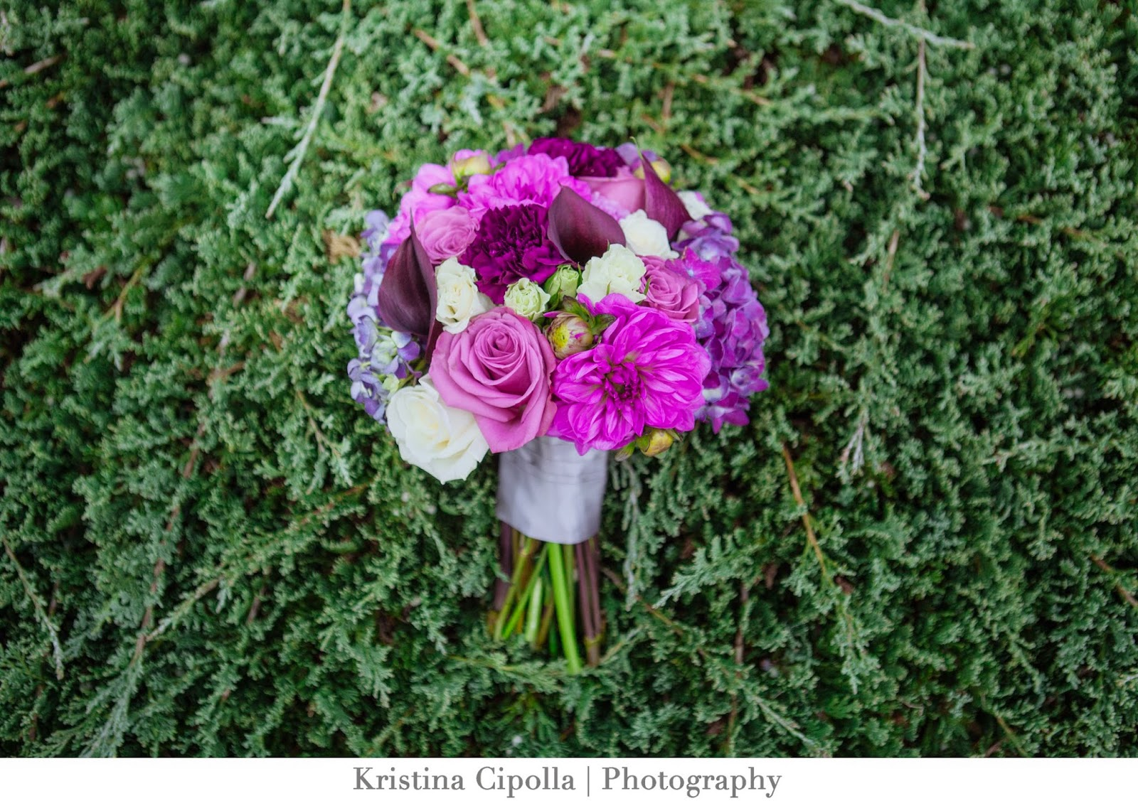 Kristina Cipolla Photography, St. Louis Wedding Photographer, Belleville IL Wedding Photographer
