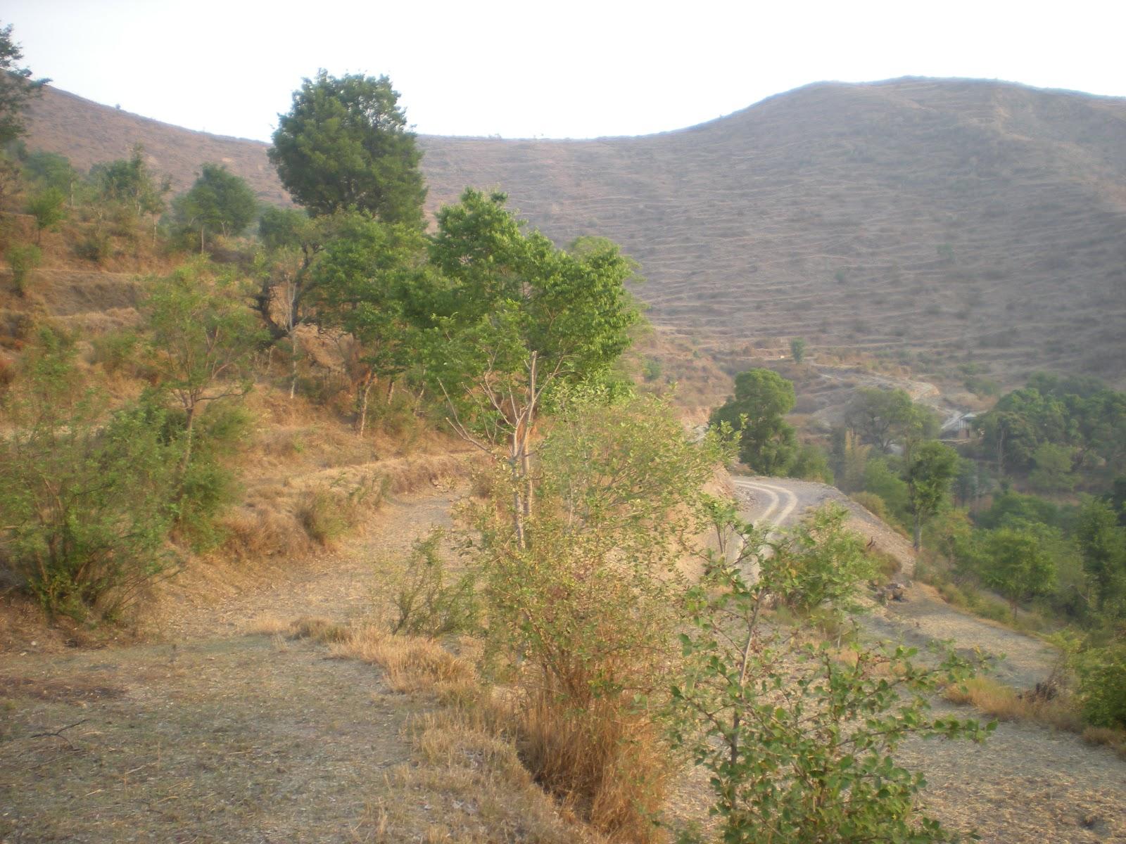 Pauri Garhwal India  city photos : TOURIST PLACE IN INDIA: Pauri Garhwal