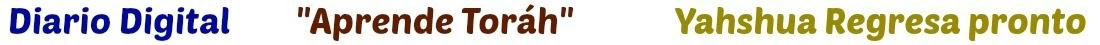 Diario Digital Congregación talmidim de Yahshua