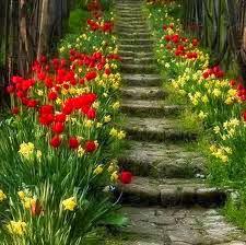 Das Flores construa um jardim...