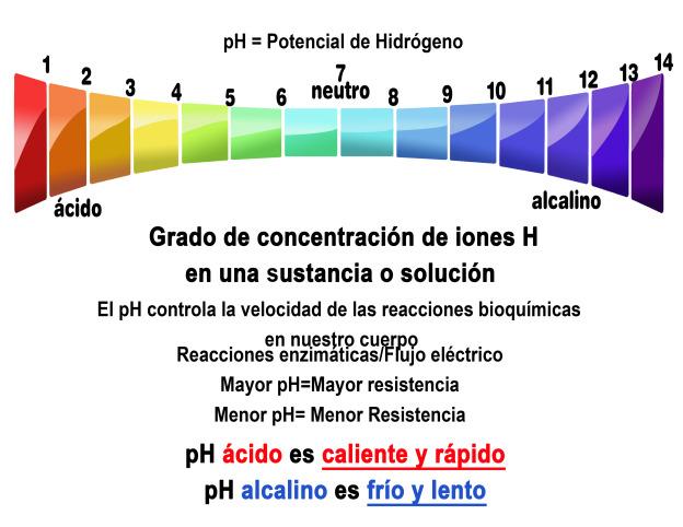 remedio caseiro para acido urico elevado pulpo y acido urico espinacas contienen acido urico