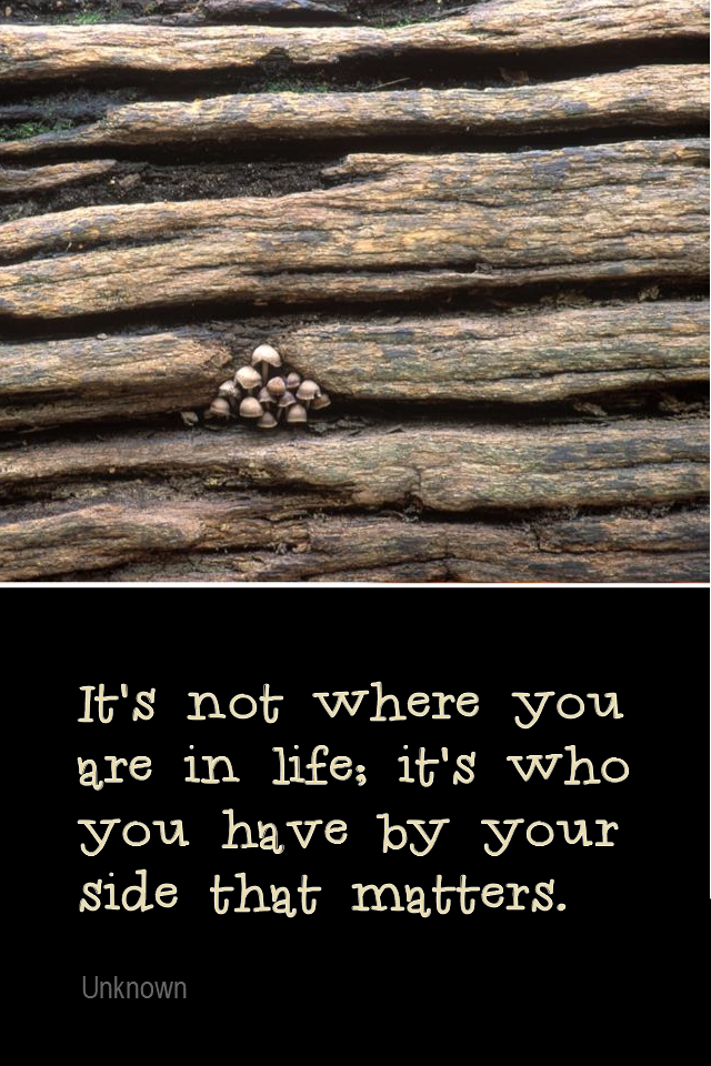 visual quote - image quotation for Friendship - It's not where you are in life; it's who you have by your side that matters. - Unknown