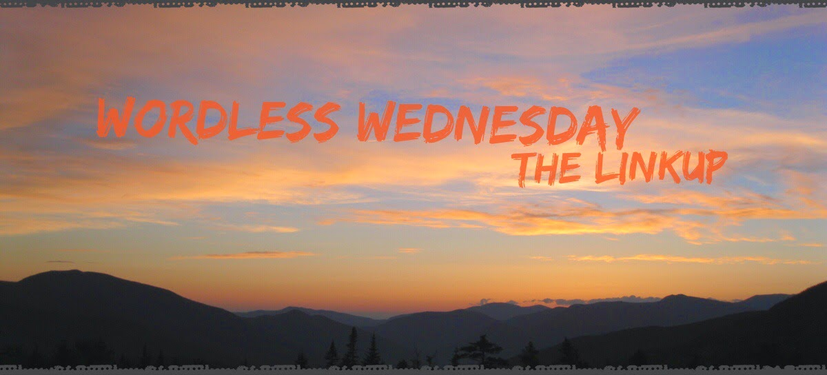 Wordless Wednesday badge at The 3Rs Blog