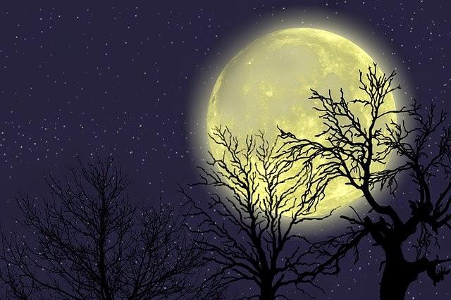 Měsíc na hvězdné obloze