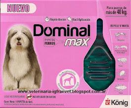 Pipeta Dominal Max para perros mayores de 40 kg