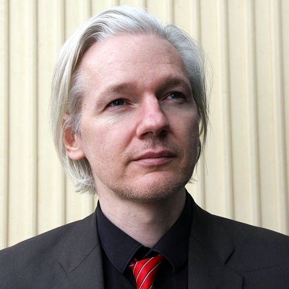 Julian Assange, Wikileaks, Election 2013, Senate, Constitution