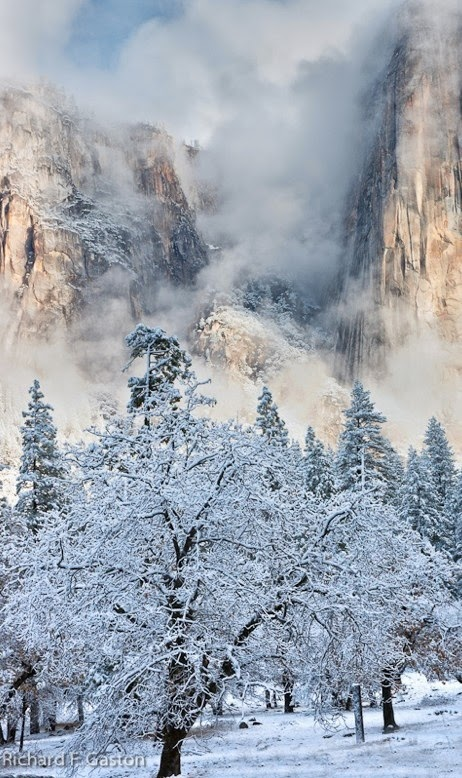 Winter - Yosemite National Park, California