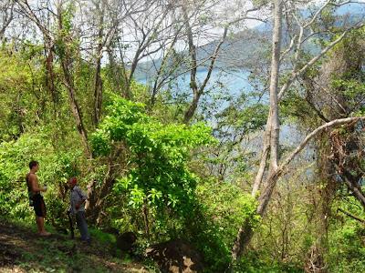 Laguna de Apoyo reforestation