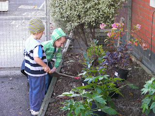 digging for victory in the school flowerbeds