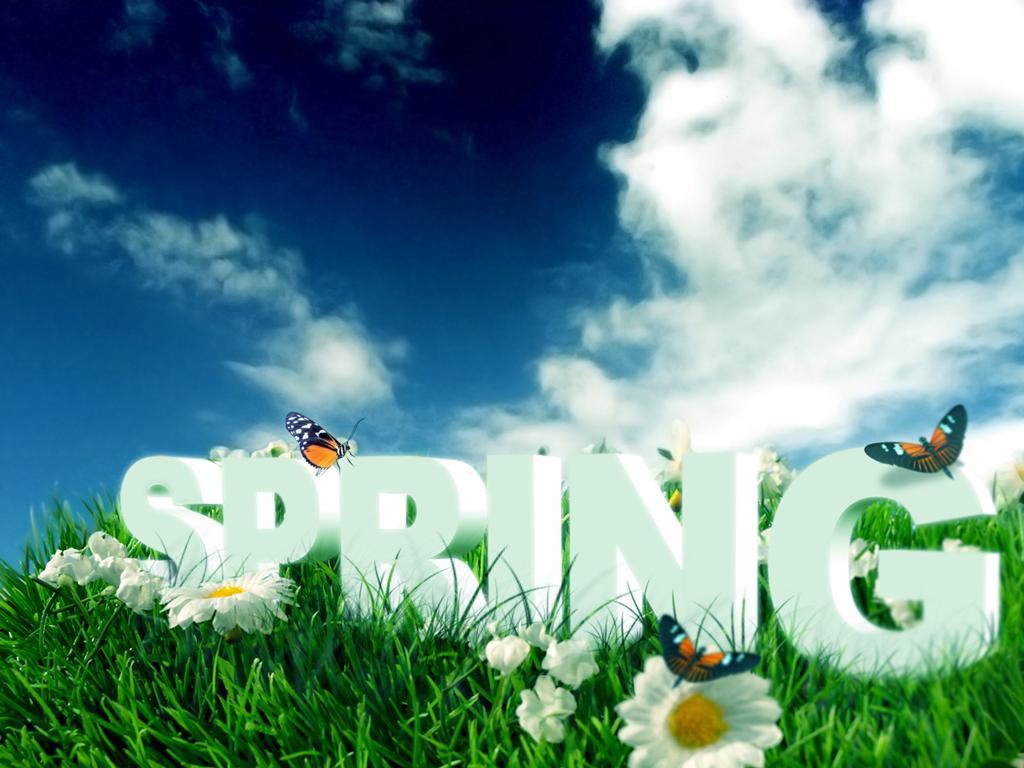 http://2.bp.blogspot.com/-JHS1toS7R14/TjNMnOJxVXI/AAAAAAAAG2Y/m8hmywenn7E/s1600/spring+flowers+wallpaper-1.jpg
