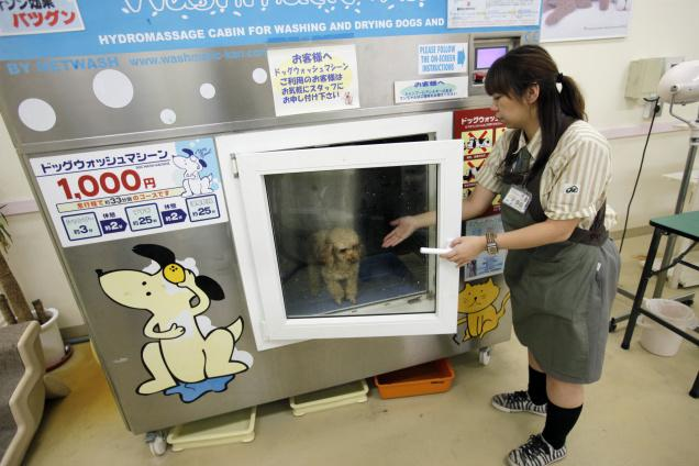 mesin basuh haiwan