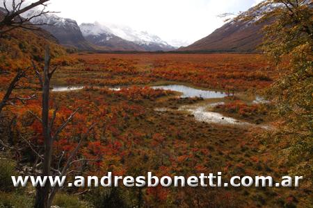 Otoño en la Cordillera de los Andes - El Chaltén - Camino al Lago del Desierto - Patagonia - Andrés Bonetti