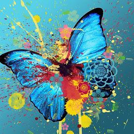Gambar-gambar warna-warni indah