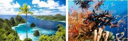 Sumber Daya Alam Kepulauan Raja Ampat Mikirbae