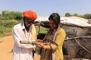 Bharthari Community