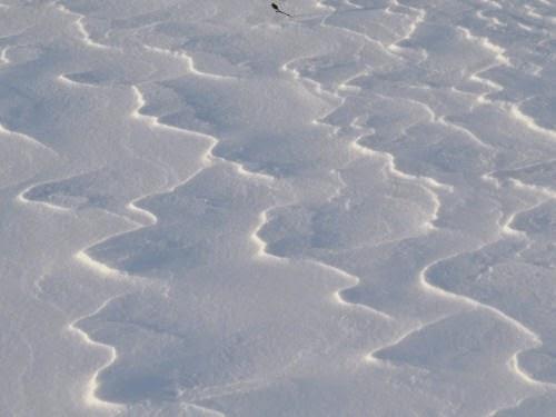 wind patterns in snow