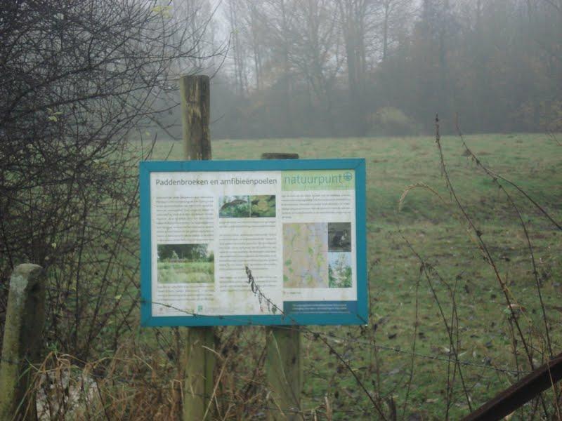 natuurgebied Paddenbroeken