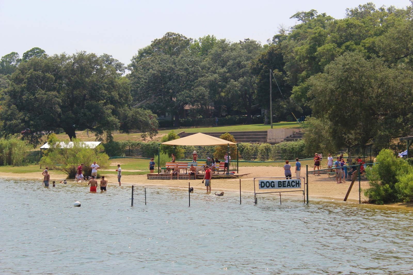 Dog Park Pensacola Beach
